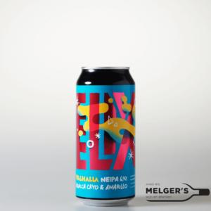 Nieuwe Bieren augustus 2020